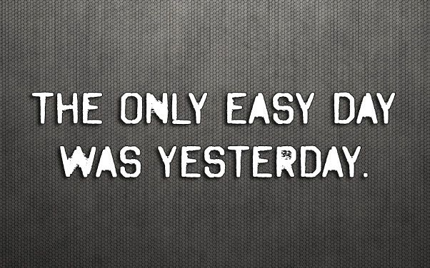 seal-easy-day